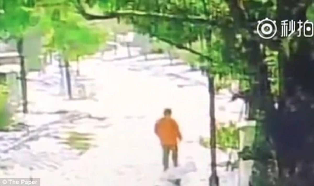 Torturó a su hijo hasta la muerte ¡por perder su celular!
